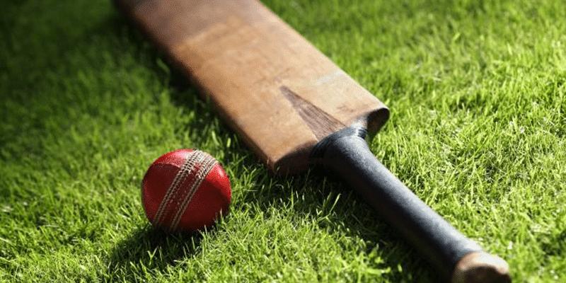 Como apostar no críquete